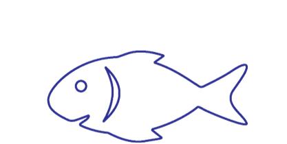 transporte pescado